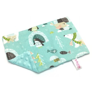 Antarctica Cotton Minky Short Pillow Case