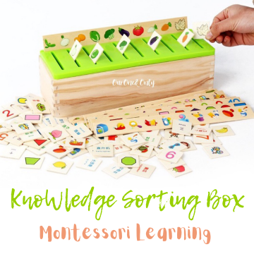 Knowledge Sorting Box
